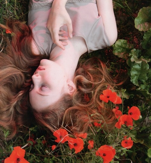 lying over flowers