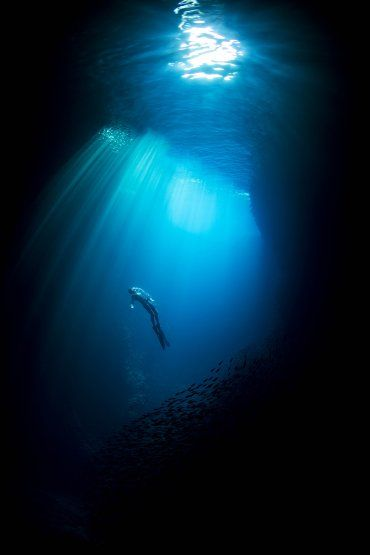 Era carpintero pero abandonó su profesión para dedicarse a la fotografía bajo el agua. Esta galería recorre el apasionante y peligroso trabajo de Matt Draper