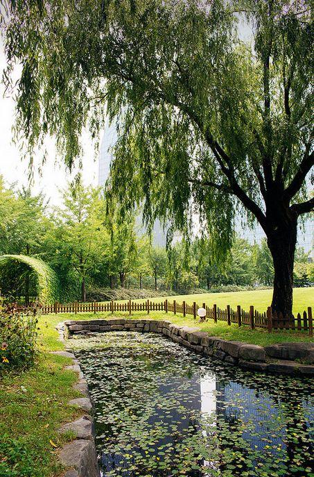 Yeouido Park, Yeouido, South Korea