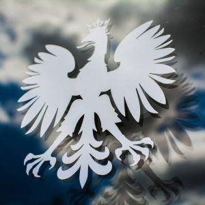 Polski orzeł naklejka wycinana