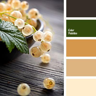 Color Palette #3400