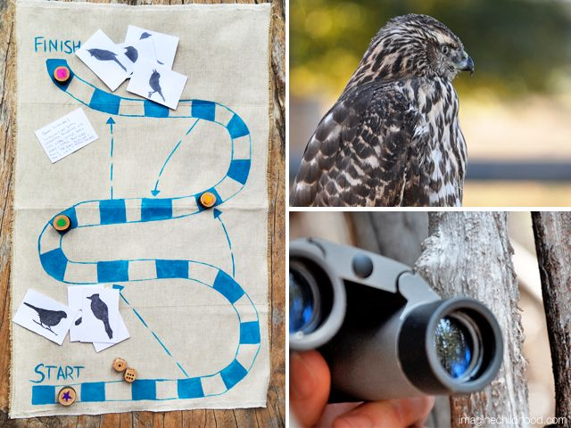 Bird Land board game Imagine Childhood