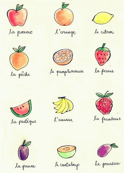French vocab--fruits