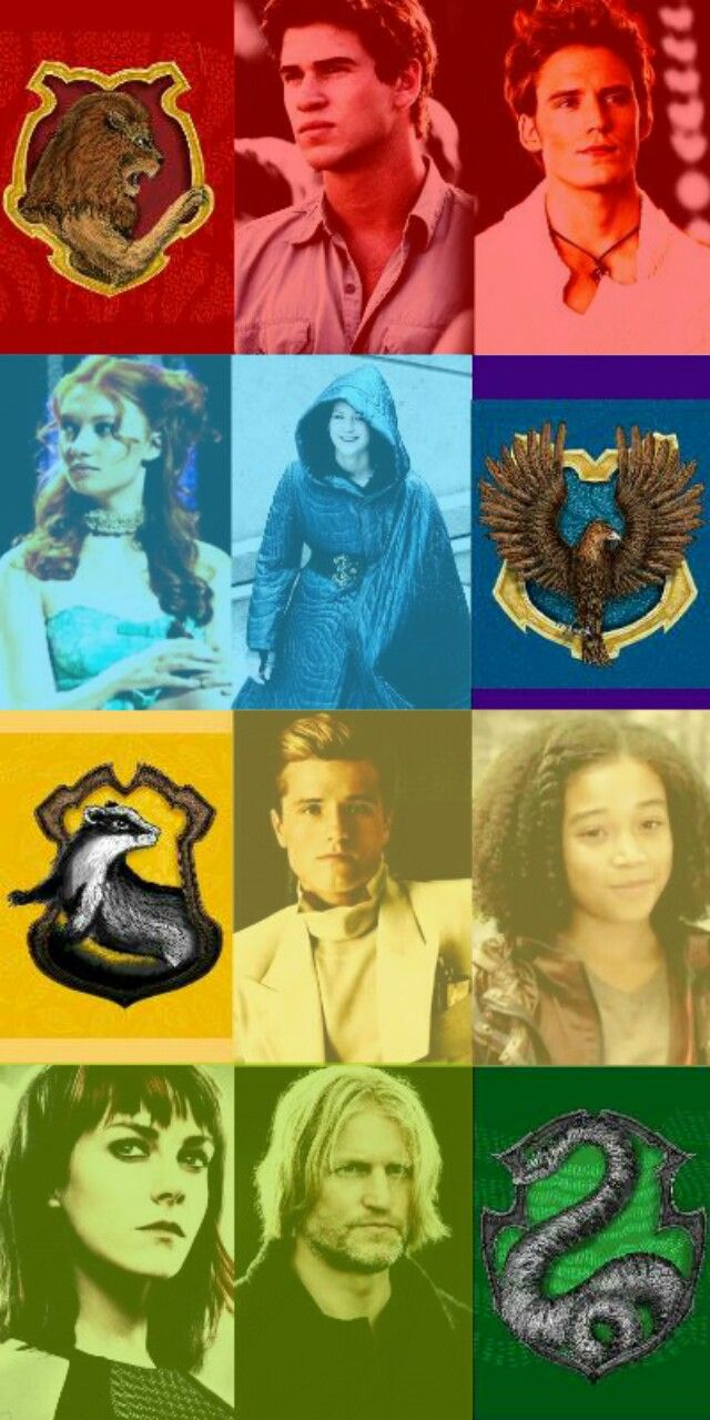 I don't completely agree. Haymitch is Ravenclaw, Katniss is Gryffindor