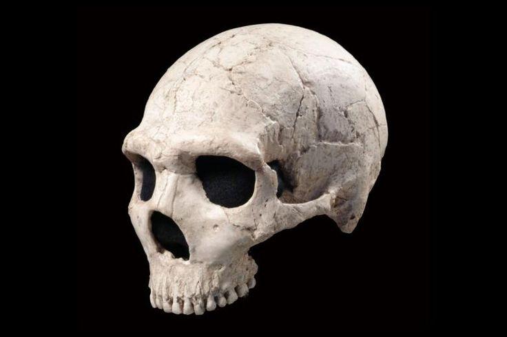 skull dating site