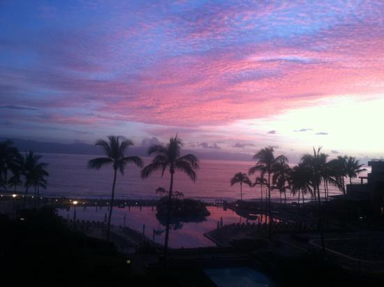 Casa Magna Marriott Puerto Vallarta Resort & Spa (Jalisco) - Complejo turístico - Opiniones y Comentarios - TripAdvisor