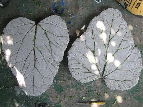 DIY! How to make Rhubarb leaf concrete stepping stones for your garden!