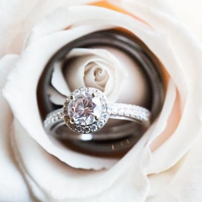 Diamond round halo wedding ring with a diamond band and the groom's wedding band sitting in a white rose | Bethaney Photography | villasiena.cc