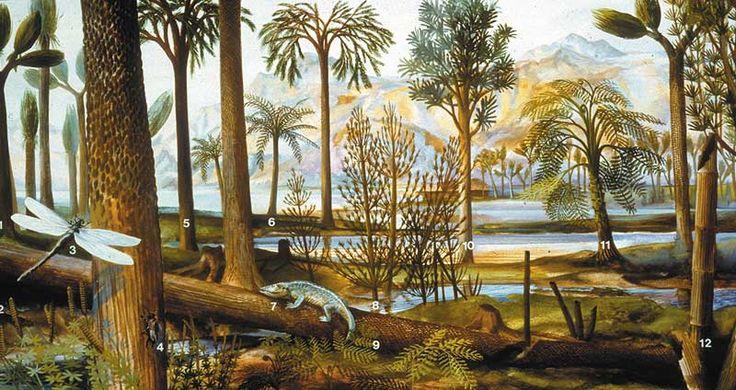 Carboniferous Google Search Ancient Life Pinterest