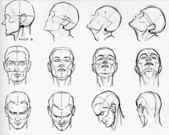 Looking Head Tilting Perspectives Andrew Loomis Drawing Proportions Drawing Heads