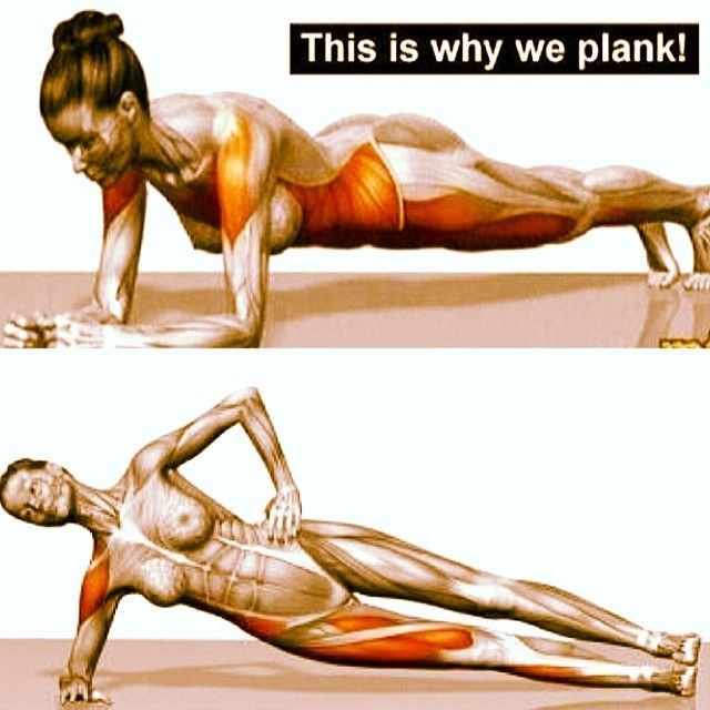 The day isn't over yet. Did you do your #planks yet? #bikiniseason #fitness #healthy #fit #planking #exercise #workout #gymlife #muscl...