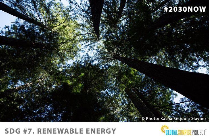 Sustainable Development Goal 7: Renewable Energy. Everyone's participation needed. #SDGS #SDG7 #renewableenergy #cleanenergy #sustainability #TheWorldWeWant #globalgoals #2030NOW #glblctzn #globalcitizen #sustainabledevelopment #UNYouth #globalpoverty #UNWomen #Socialgood #Unitednations #millennials #UNDP #fairtrade #socialentrepreneurs #socialjustice #socialgood #UN4Youth #UNWomen4Youth #theglobalsunriseproject #globalsunrisers #changemakers #CSW60 #YouthCSWForum @YouthForumCSW @UN_CSW
