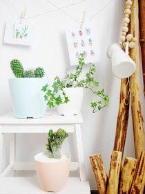 Saksı Boyama - Paint Flower Pots