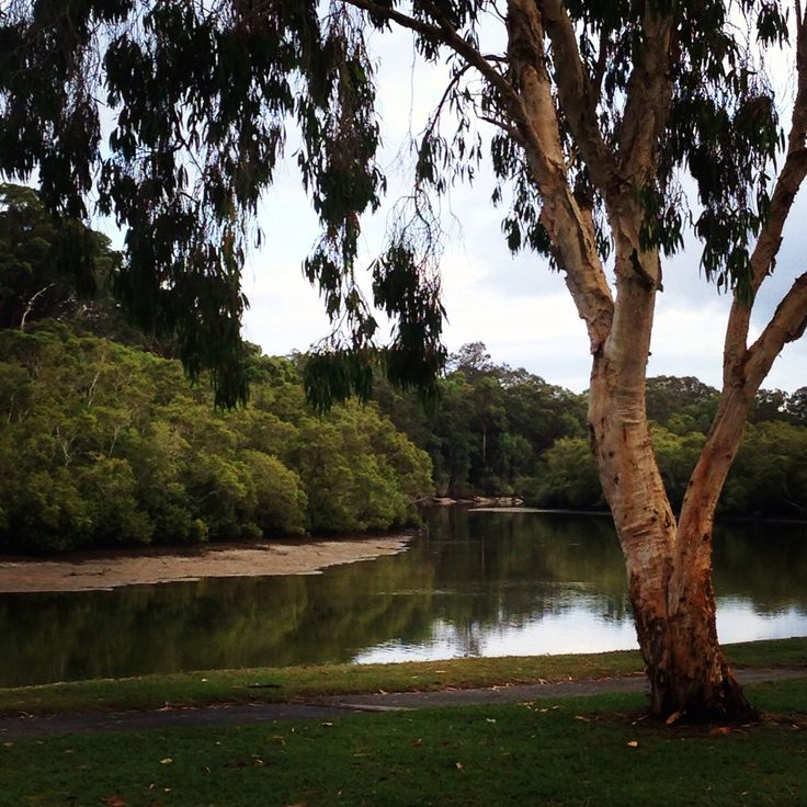 Tallebudgera Creek - peace in the morning