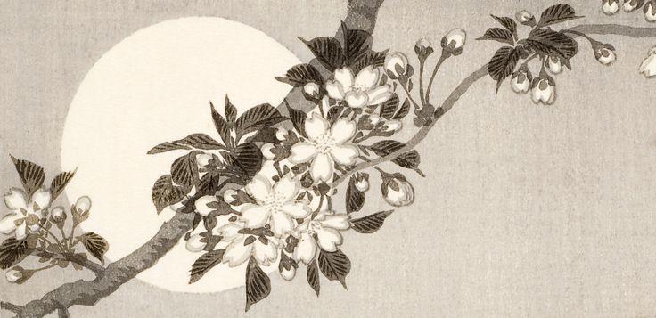 Blommor i japansk konst. Skönhet och symbolik — Östasiatiskamuseet