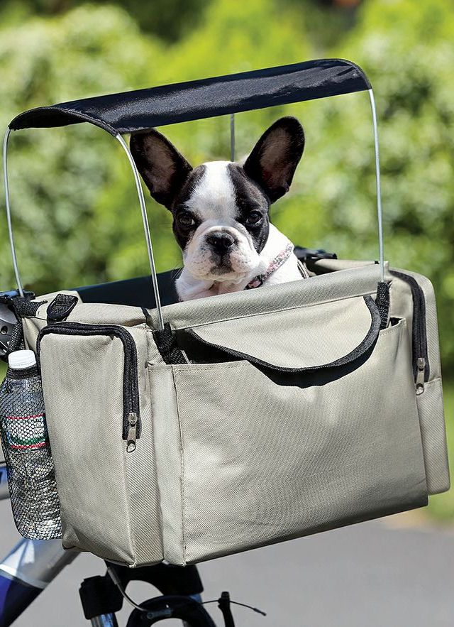 Pet Bicycle Basket | SO cUte!