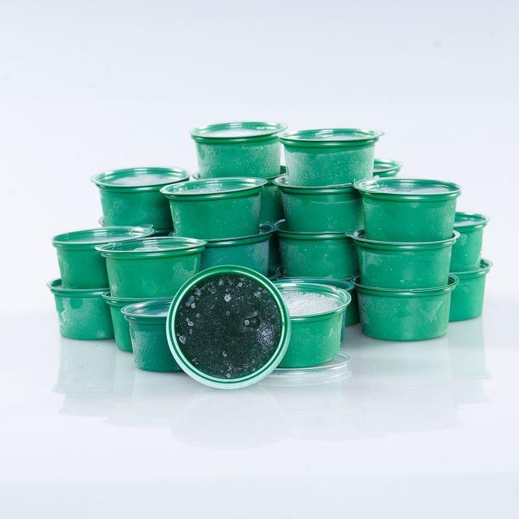 Свежая живая спирулина замороженная, 30 порций по 42 гр.