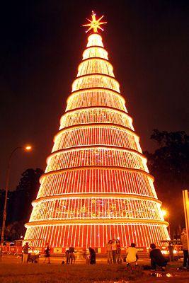 Huge Christmas tree of lights in Sao Paulo Brazil.