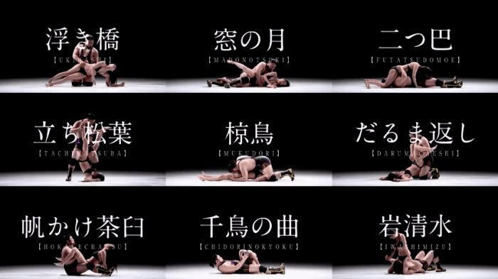Intense Japanese Kama Sutra Video Will Walk You Through All The Sex Positions You Need To Know - Explore like a Gipsy, Study like a Ninja