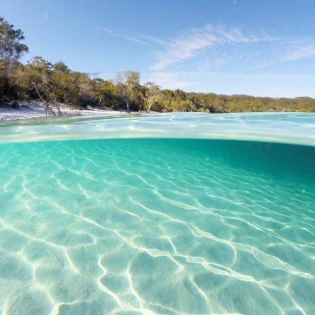 Lake McKenzie on Fraser Island, Australia is what's known as a 'perched lake' - so it's basically a giant natural swimming pool, completely full of fresh rainwater. The sand is pure, white silica, super soft between your toes!