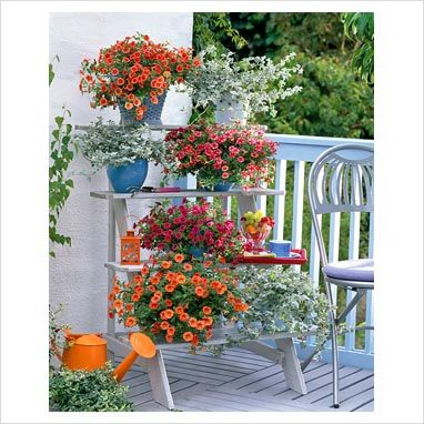 Tiered balcony garden - great way to have more plants in a small area