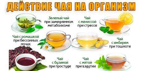 Действие чая на ваш организм | Полезные советы