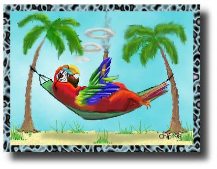 Parrot Head ParadiseParrots Head, Jimmy Buffett, Head Art, Buffett Margaritaville, Margaritaville Parrothead, Parrothead Paradise, Art Unique Abstract, Head Parties, True Parrothead