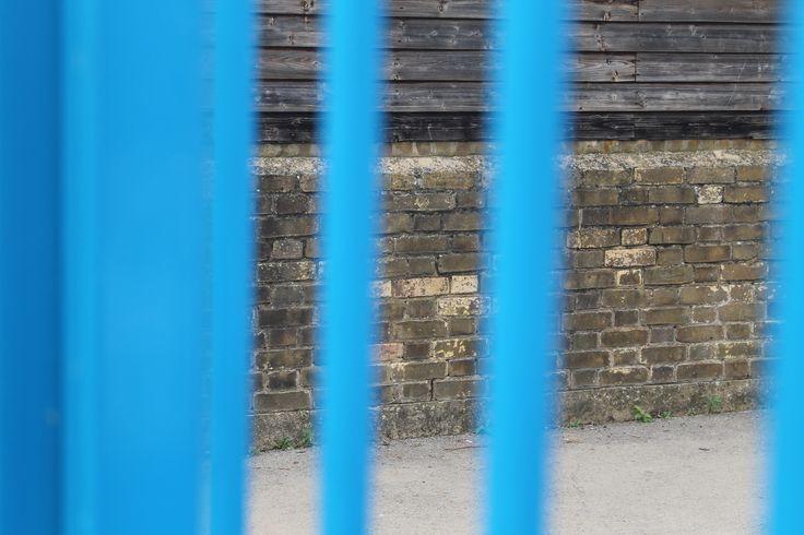 Blurred Blue Bars