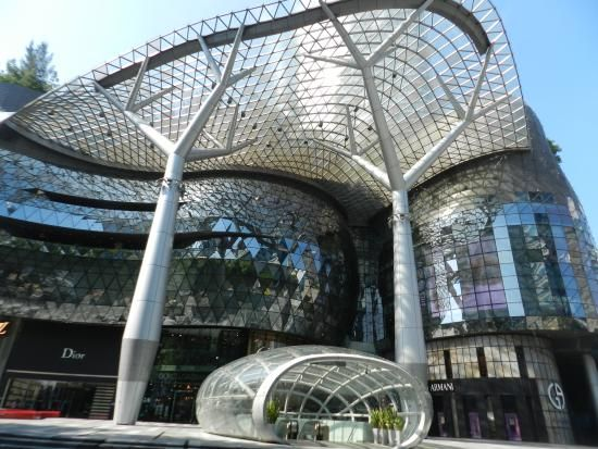 National Orchid Garden (Singapore): Address, Phone Number, Tickets & Tours, Reviews - TripAdvisor