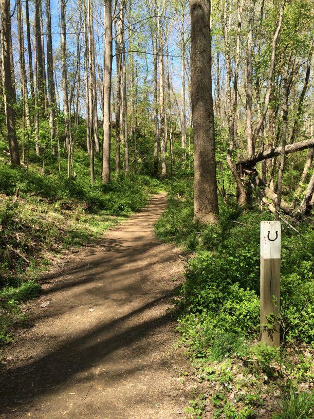 5 Tips for Hiking the Fairfax Cross County Trail | Fun in Fairfax