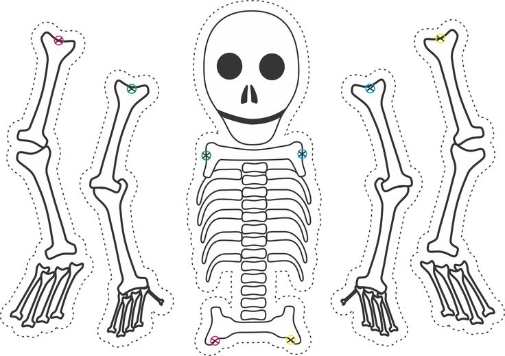 Dry bones skeleton puppet template; for Ezekiel