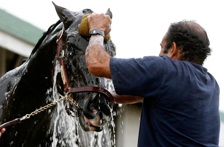 Дерби — скачки на лошадях на ипподроме в Кентукки