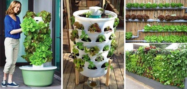 20  Vertical Vegetable Garden Ideas http://www.goodshomedesign.com/20-vertical-vegetable-garden-ideas/?utm_source=facebook&utm_medium=cpc&utm_campaign=diy