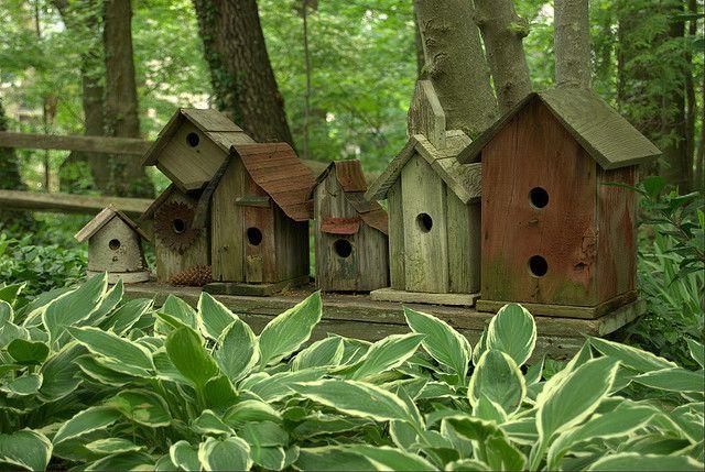 row of birdhouses