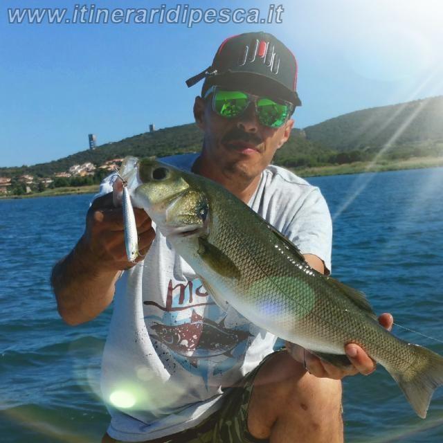 Spigola con wtd della molix con video pesca fishing