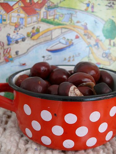 Conkers release a chemical which spiders absolutely hate. Putting them in bowls around the house will stop spiders from entering your home! Must try this, i really don't like spiders!