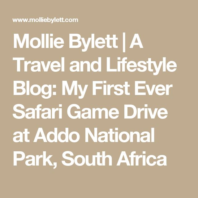 Mollie Bylett | A Travel and Lifestyle Blog: My First Ever Safari Game Drive at Addo National Park, South Africa