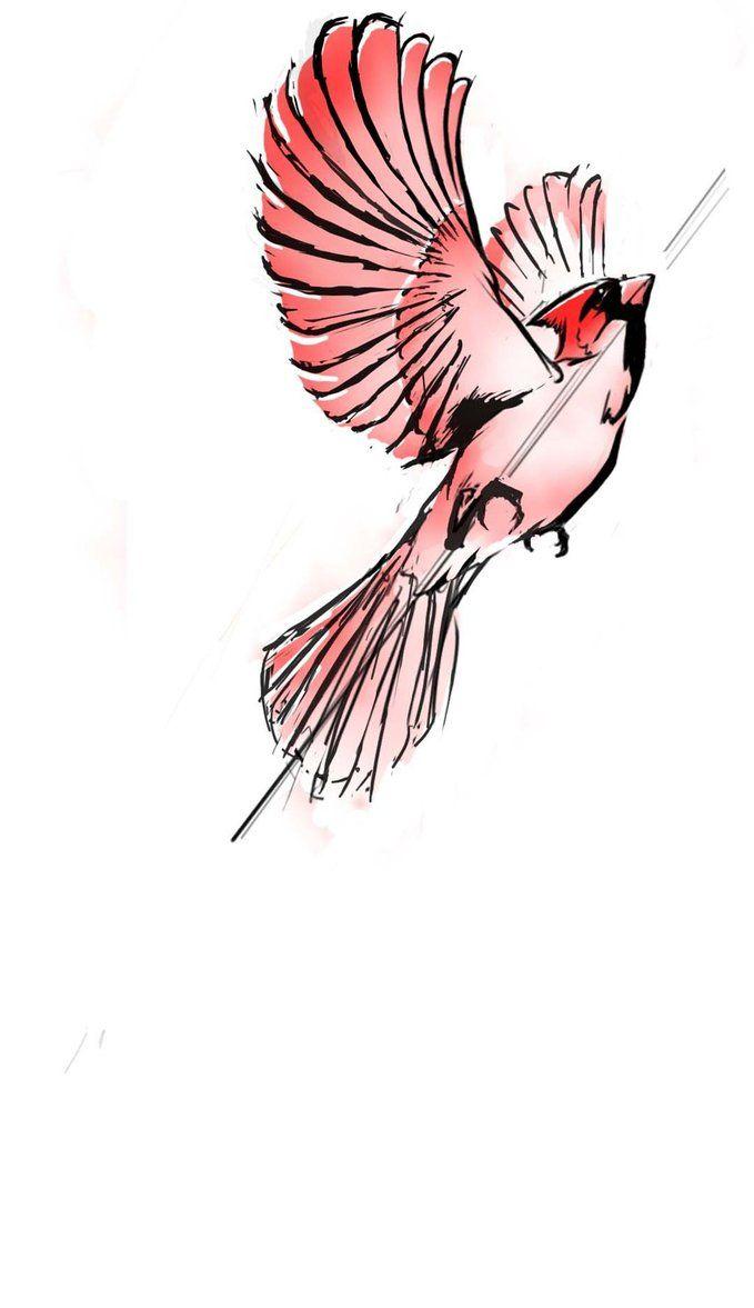 Cardinal by *MikeBourbeauArt on deviantART