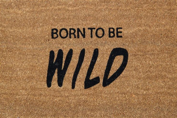 Born to be wild!  Shop at www.onlymat.com