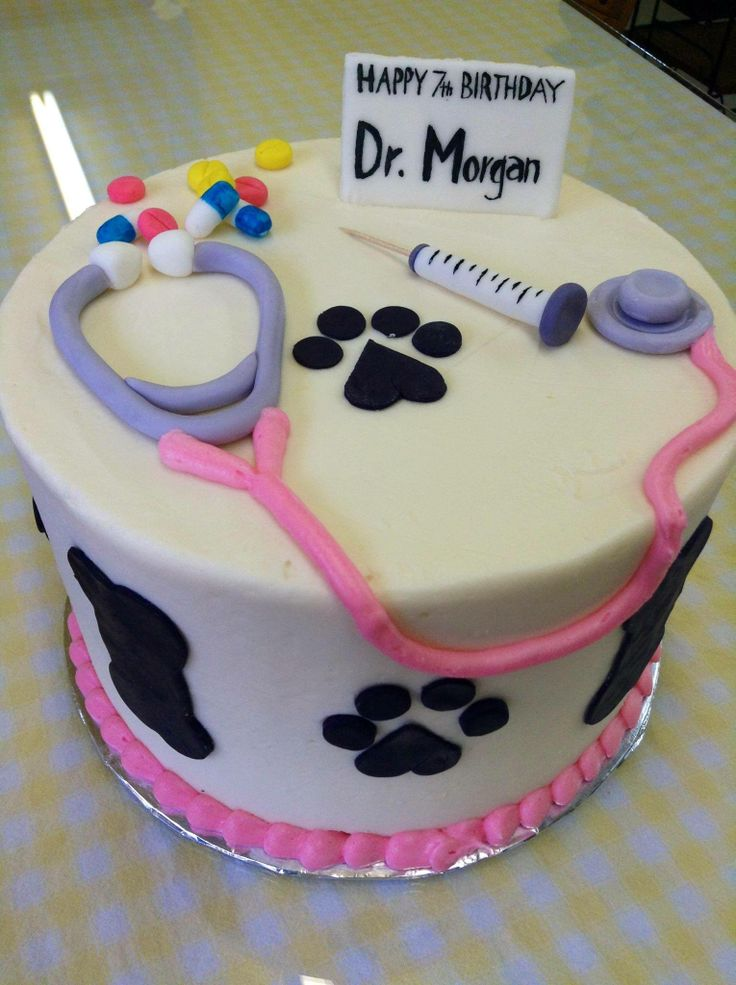 Veterinarian Themed Birthday Cake 3 Layer 9 Inch Cake