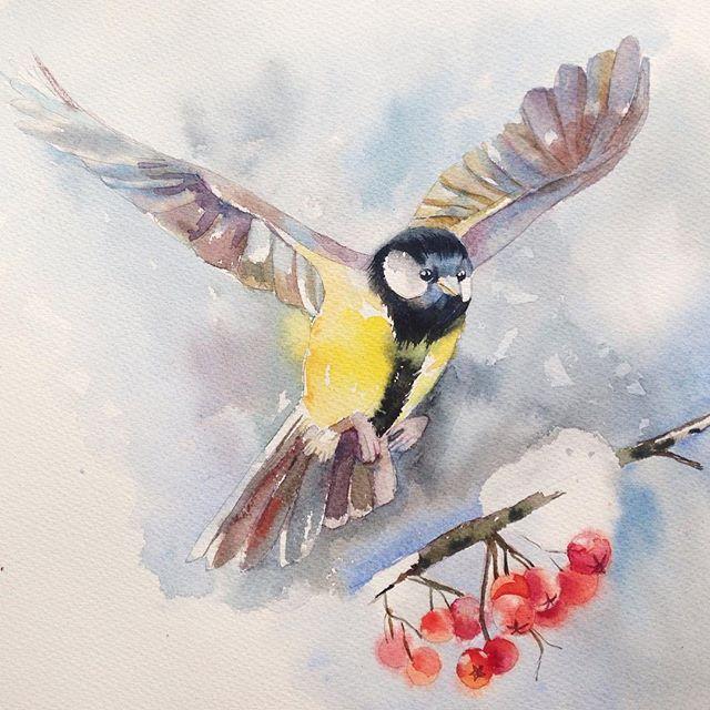 #птицы, #watercolor, #цветы, #акварель, #birds, #painting, #синица