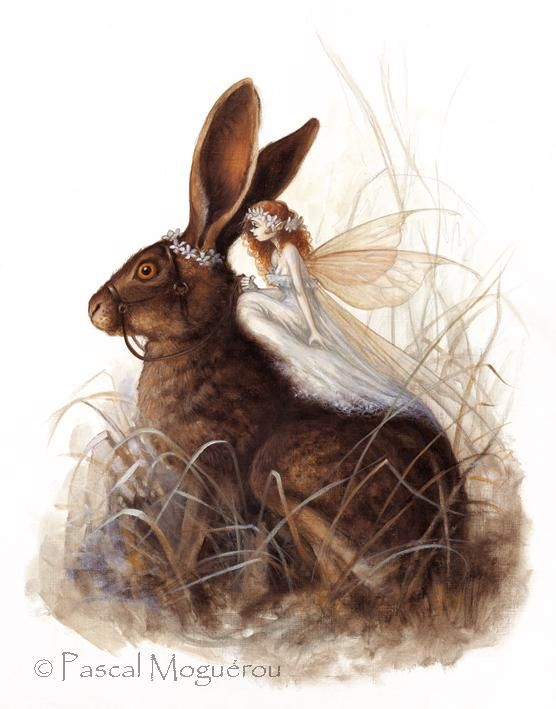 Fairy with Bunny Hare by Pascal Moguerou