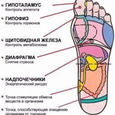 mirtesen.ru