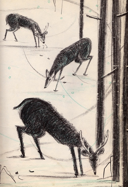 Warmhearts in Winter | Deer in the Snow by Miriam Schlein, illustrated by Leonard Kessler (1950s).