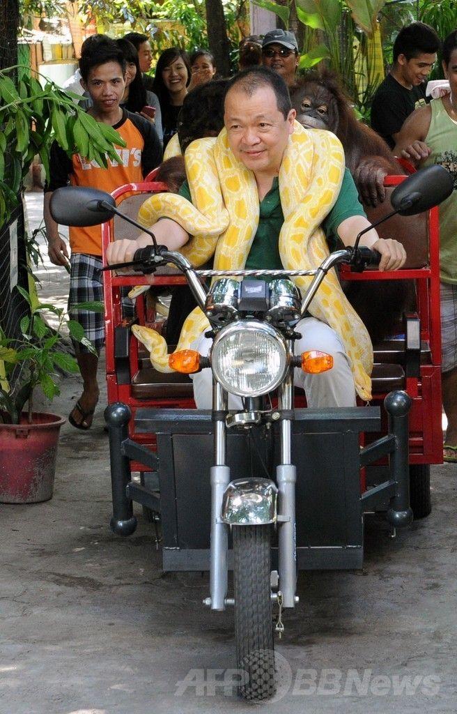 フィリピン・マニラ(Manila)郊外のマラボン動物園(Malabon Zoo)で、三輪電気自動車(EV)のプロモーションのため、飼育しているオランウータンとアルビノ(先天性色素欠乏症)のニシキヘビを乗せて園内を走るオーナーのマニー・ティアンコ(Manny Tiangco)さん(2014年7月12日撮影)。(c)AFP/Jay DIRECTO ▼13Jul2014AFP|三輪EV車で大気汚染対策、フィリピン動物園で販促活動 http://www.afpbb.com/articles/-/3020400 #Malabon_Zoo