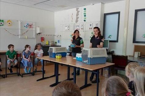 Sint Martinusschool Millingen aan de Rijn   groepen 3 en 4 kregen bezoek van twee medewerksters van de Boerenbond uit Millingen. De kinderen kregen uitleg over muizen, gerbils, cavia's, hamsters en konijnen. En natuurlijk mochten de konijntjes ook voorzichtig geaaid worden. Heel erg bedankt, het was leuk!