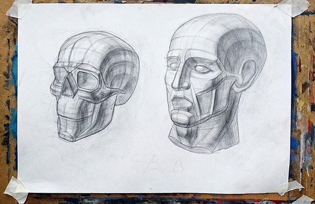 Рисунок черепа и головы Экорше.  #рисунок  #творчество #художник #своимируками #арт #искусство #art #arte #instaart #рисуюкаждыйдень #художественнаястудия #ярисую #artist #draw #drawing #pencil #череп #карандаш #рисую #figure #skull #учусьрисовать #fineart