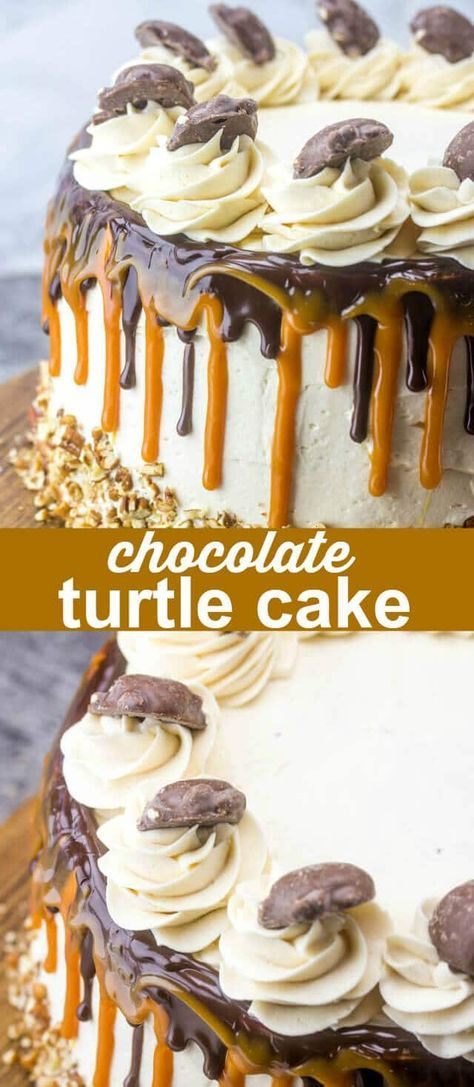Chocolate Turtle Cake {A Fun Decadent Chocolate Layer Cake} chocolate/caramel/cake Sky high and full of chocolate and caramel goodness this Chocolate Turtle Cake is the perfect sweet indulgence that you need in your life at any given moment! via @thebestcakerecipes
