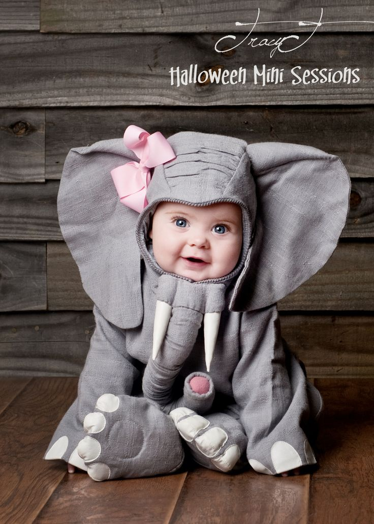 baby elephant halloween costume my photography pinterest. Black Bedroom Furniture Sets. Home Design Ideas