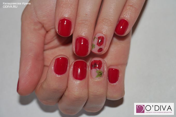 Слайдер дизайн/водные наклейки (маки М30) http://odiva.ru/~OrvmX  #одива #odiva #водныенаклейки #наклейкидляногтей #слайдердизайн #наклейкинаногти #дизайнногтей #stickernail  #ногти #nail #nails #дизайнногтей #naildesign #nailart #идеиманикюра #маникюр #manicure #материалыдлядизайнаногтей #design #nailbeauty #fashion #instanails #style #follow